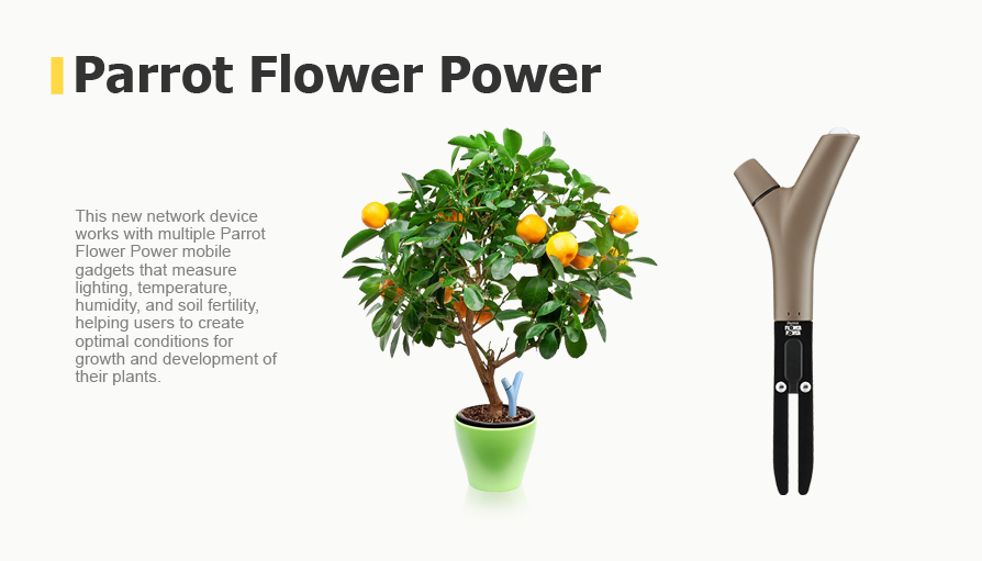 network device works with multiple Parrot Flower Power mobile gadgets that measure lighting, temperature, humidity, and soil fertility